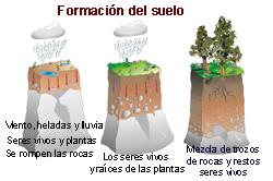 Volver al cole kaizen educacrossa el suelo estructura for Formacion de los suelos